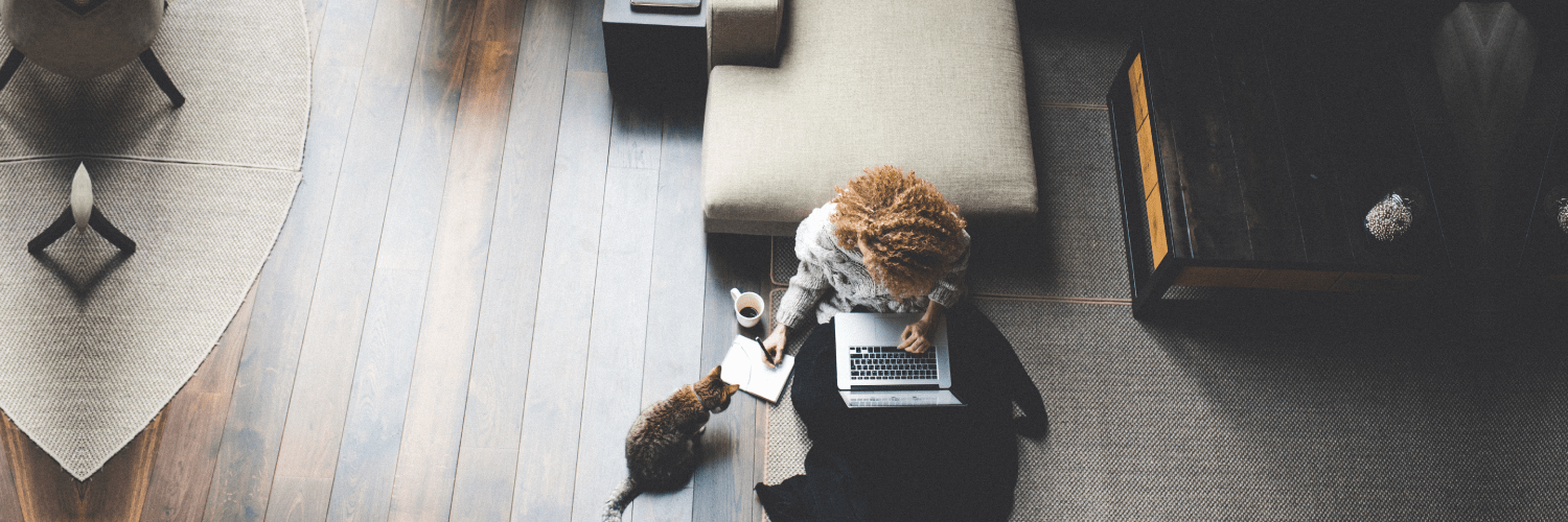 Overhead view of a Sangoma customer and their cat who is staring intently at a spider about to crawl up her leg. Do something about the spider cat!